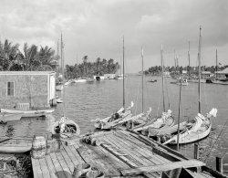 Miami River Mooring: 1910