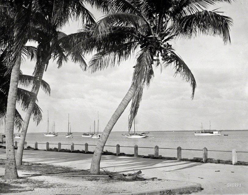 Biscayne Bay: 1912