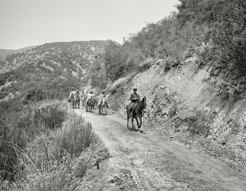 Trail Ride: 1912