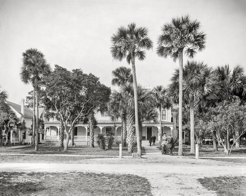 Mildred Lodge: 1915