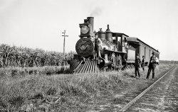 Cane Train: 1897