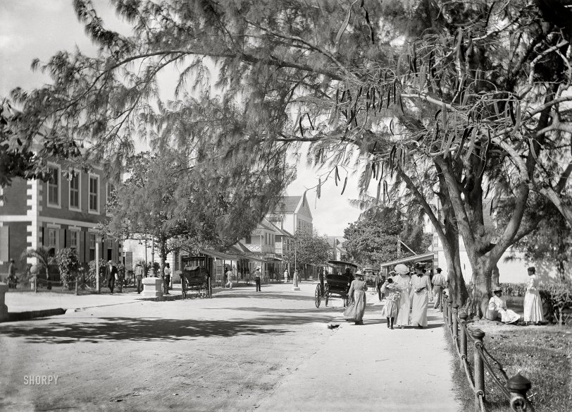 Bay Street: 1906