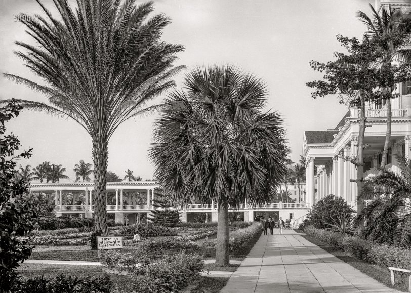 The Colonial: 1901