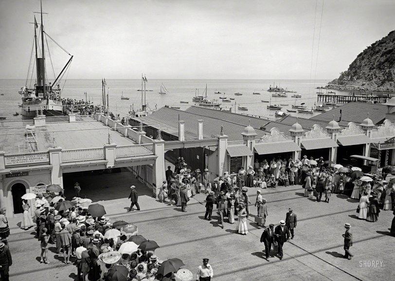 Fun With Tuna: 1915
