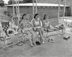 Ladies Who Lounge: 1958