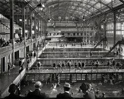 Sutro Baths: 1915