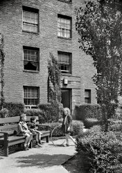 Phipps Garden: 1940
