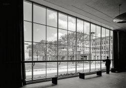 Foyer Voyeur: 1942