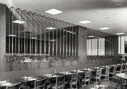 Chez Philodendron: 1948
