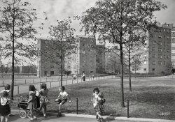 Astoria Houses: 1951