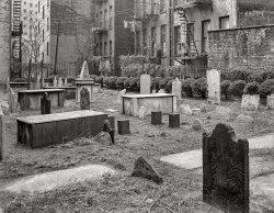 A Quiet Neighborhood: 1952