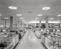 Department Store: 1955