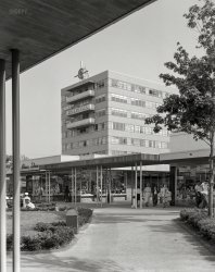 Medical/Shopping Center: 1956