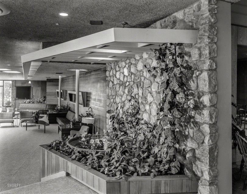 Leafy Lobby: 1957