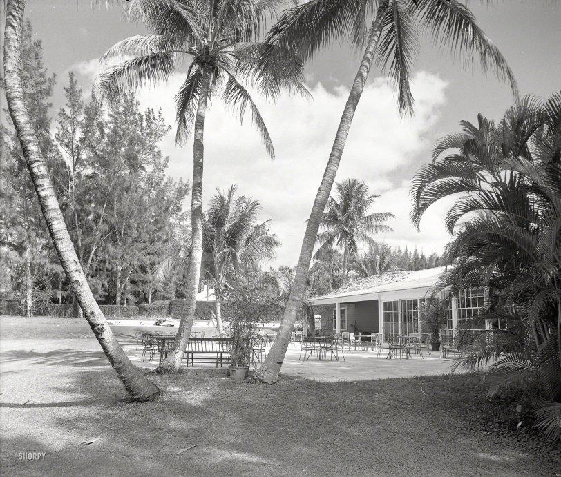 Jupiter Golf: 1958