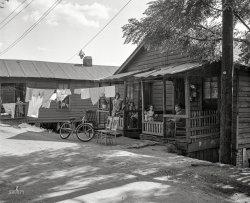 Shady Rest: 1950