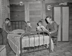 Chicken House: 1948