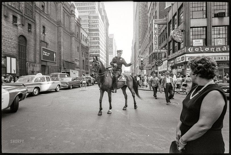 Horse Crossing: 1964