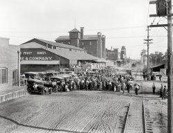 Fresno Fruit & Honey: 1915