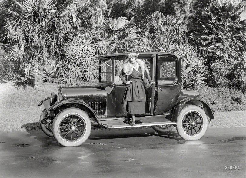 Fox Trap: 1915