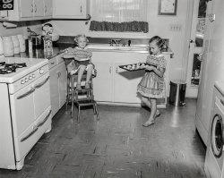 A Fresh Batch: 1955