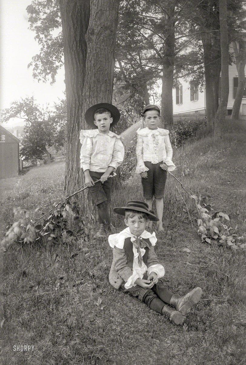 Little Boy Blue: 1900