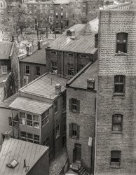 Window on Washington: 1939
