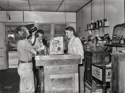 Beer Belle: 1939