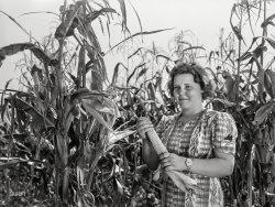 Corn Club: 1939
