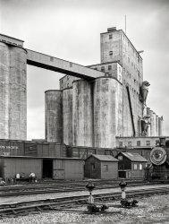 Grain Train: 1939