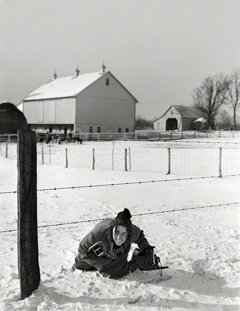 Under the Wire: 1940