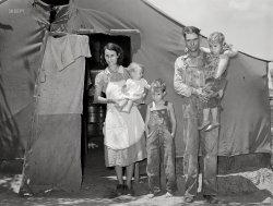 Rabies Babies: 1939