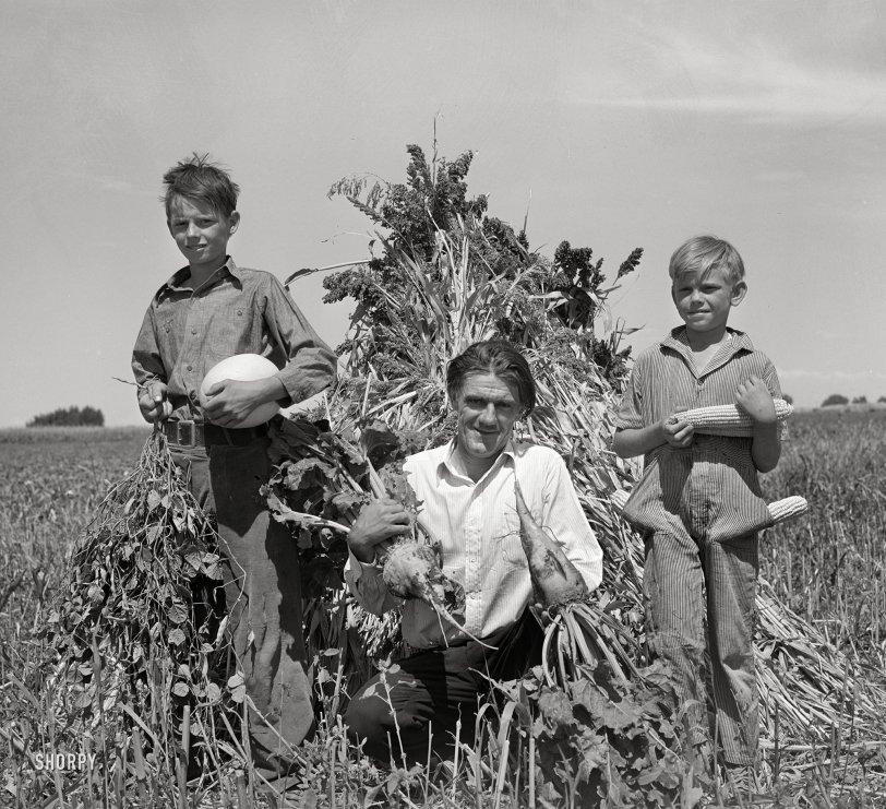 Vegetable Kingdom: 1939