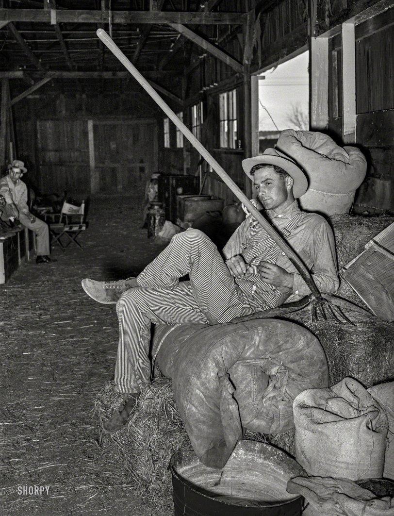 Pinstripe Cowboy: 1940