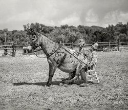 Back-Assward: 1940