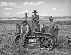 Box Elder County: 1940