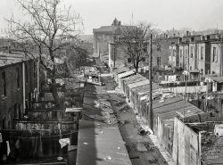 Alley Up: 1935