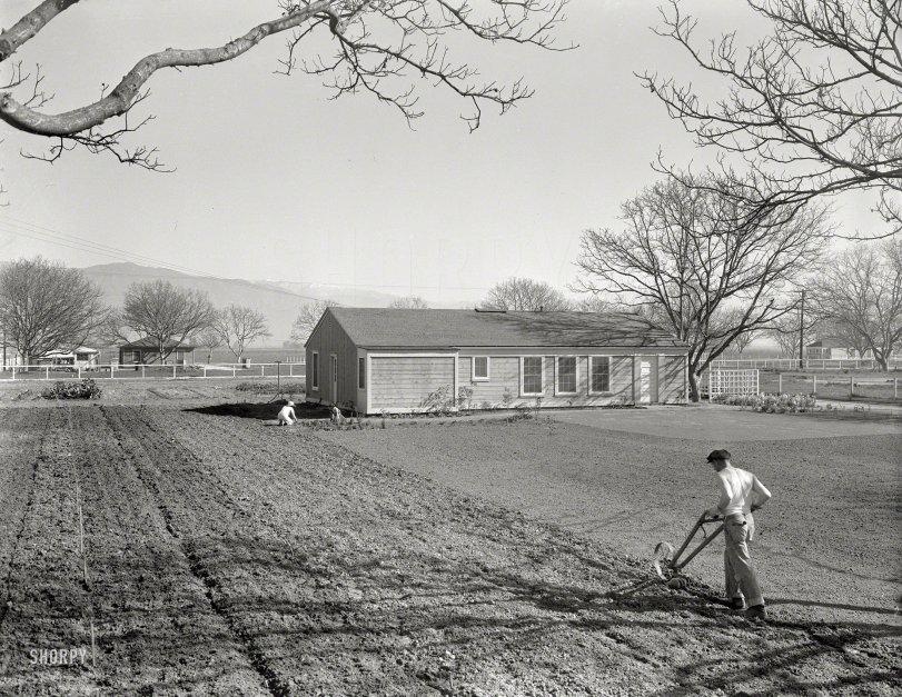 The Gardeners: 1936