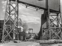 Sawdust Memories: 1936