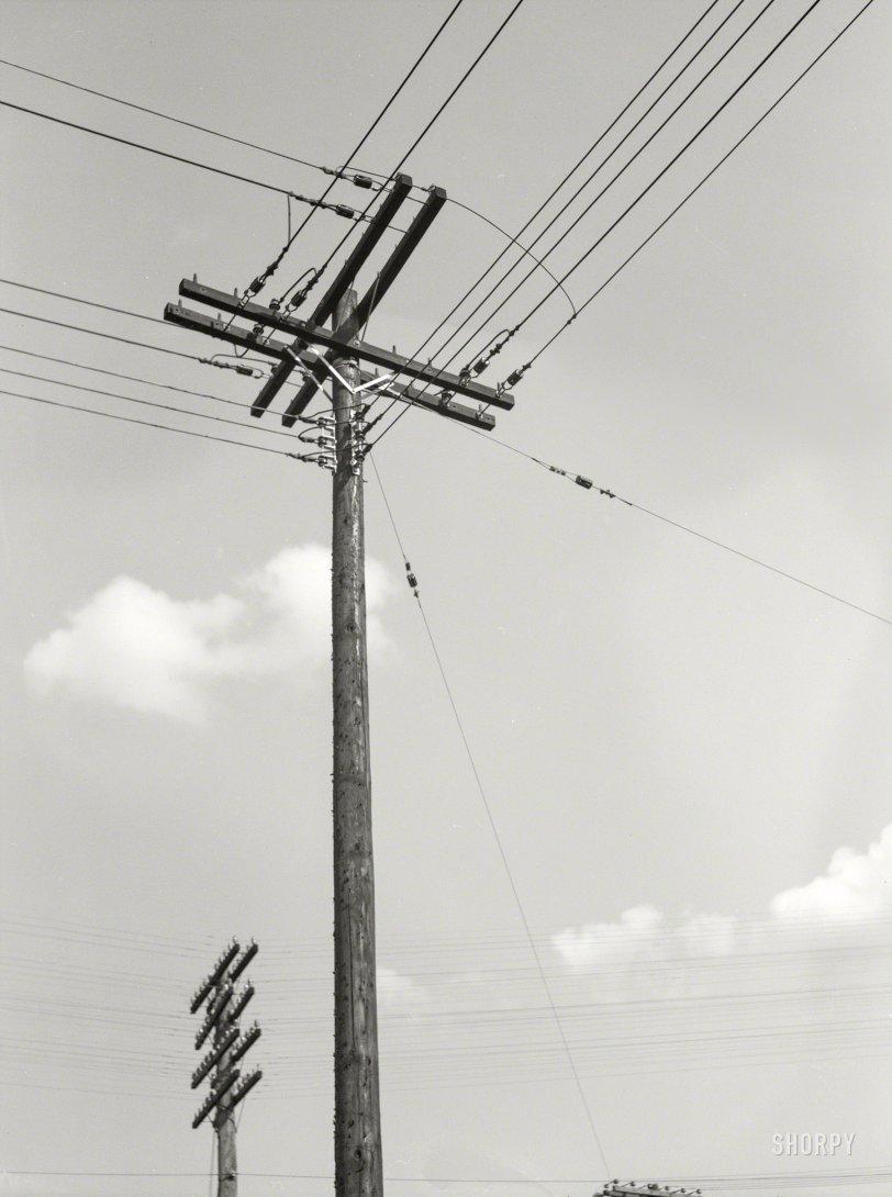 Poles Apart: 1937