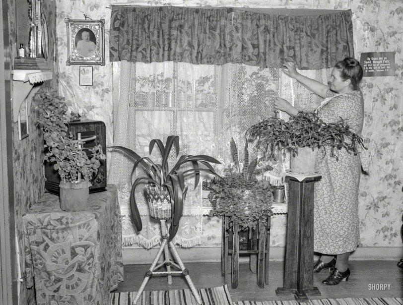Parlor Garden: 1937