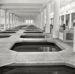 Cement Ponds: 1940