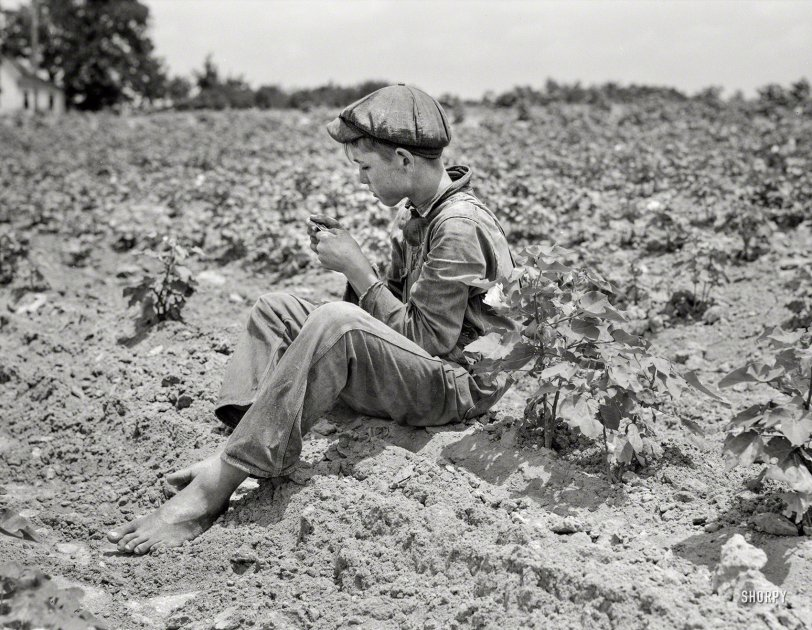 Sharecropper Boy: 1937
