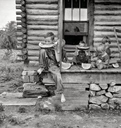 Melon Munchkins: 1939