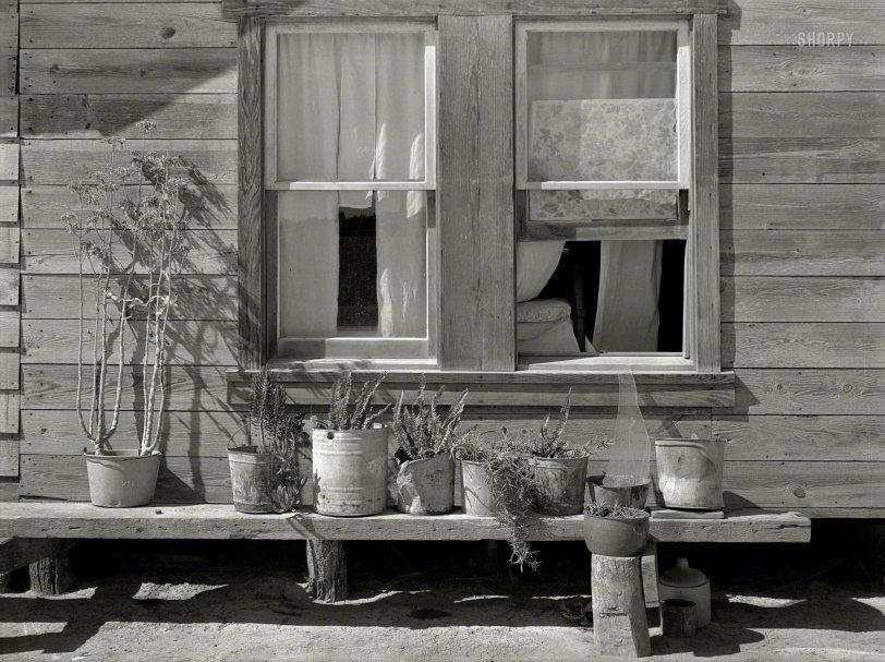 House & Garden: 1939
