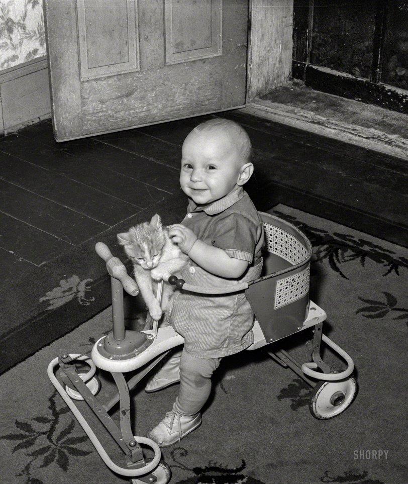 Cat Patrol: 1940