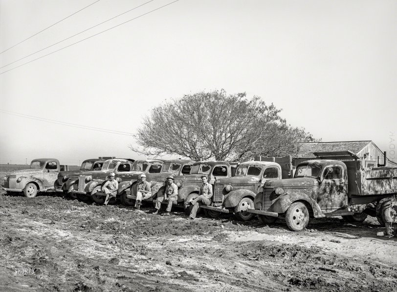 Trucks in a Row: 1940
