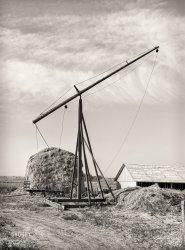 Idaho Hay: 1941