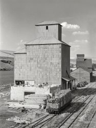 Bumper Crop: 1941