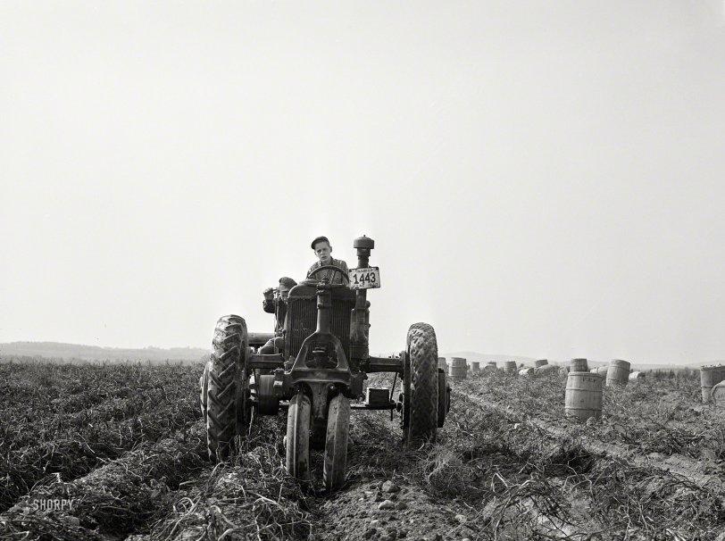 Spud Ranch: 1940